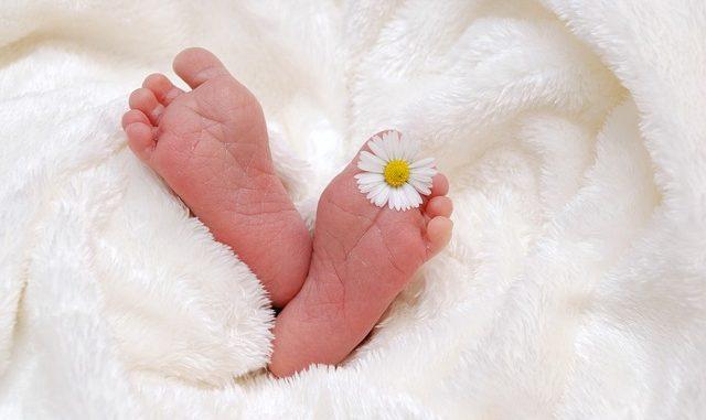 לידה ראשית